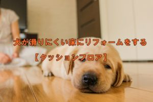 犬が滑りにくい床にリフォームをする【クッションフロア】