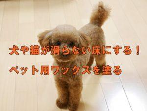 犬や猫が滑らない床にする!ペット用ワックスを塗る手もある