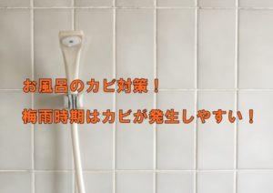 お風呂のカビ対策!梅雨時期は特にカビが発生しやすい!